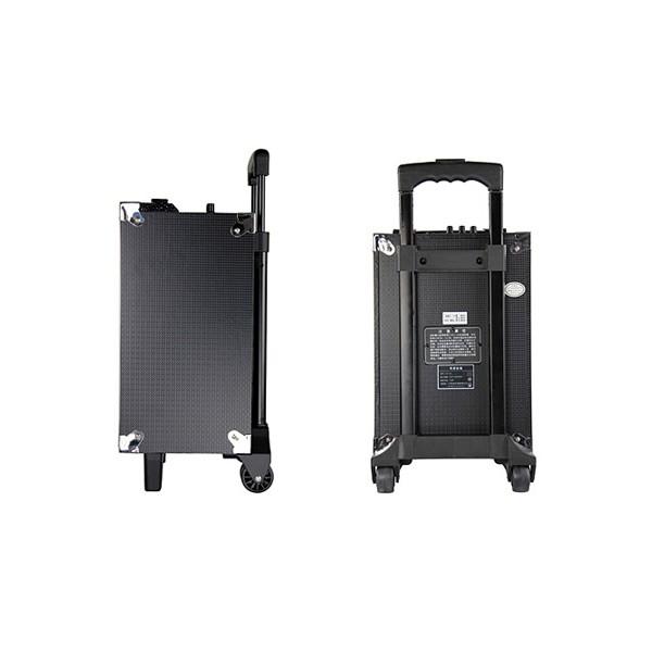 Temeisheng A8-5 - Активнa колонa с USB, Микрофон, АКБ 13