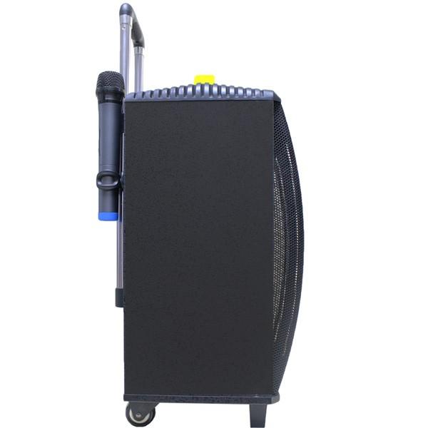 Temeisheng 10-инчов мощен високоговорител с безжичен микрофон QX-1014 6