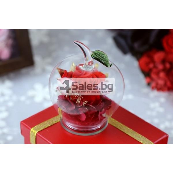 Вечна Роза в стъклена ябълка YSH F 5