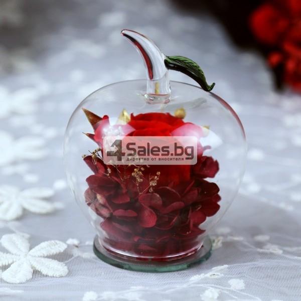 Вечна Роза в стъклена ябълка YSH F 9