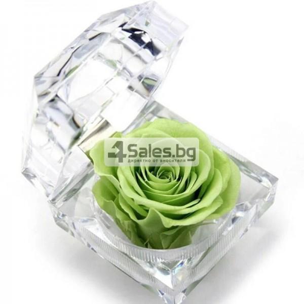 Вечна роза изключителен подарък за всяка жена YSH B 5