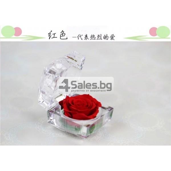 Вечна роза изключителен подарък за всяка жена YSH B 11