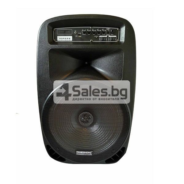 Колона Temeisheng DP-217 Преден контрол -15 инча говорител и 2 микрофон 5