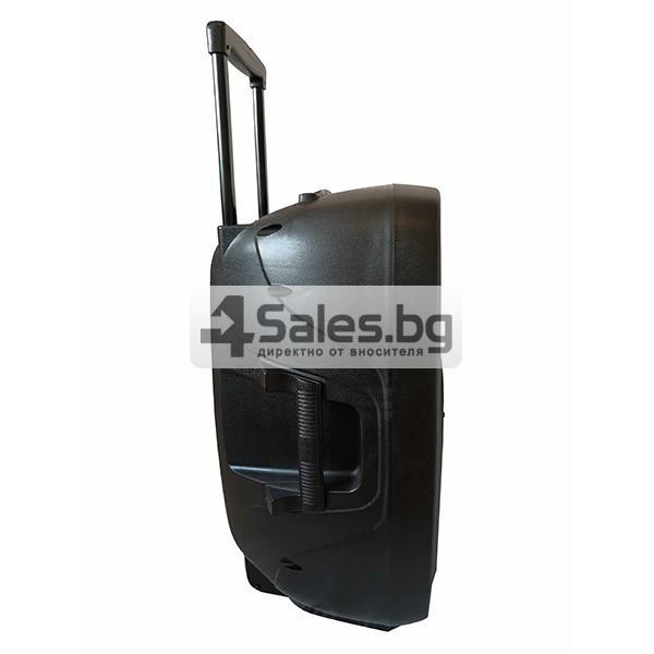 Колона Temeisheng DP-217 Преден контрол -15 инча говорител и 2 микрофон 7