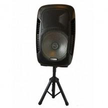 Тонколона Temeisheng DP 218S - Комплект 15 инча колона с 2 микрофон