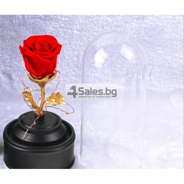 Вълшебна неувяхваща роза в стъкленица с LED светлина YSH J 1