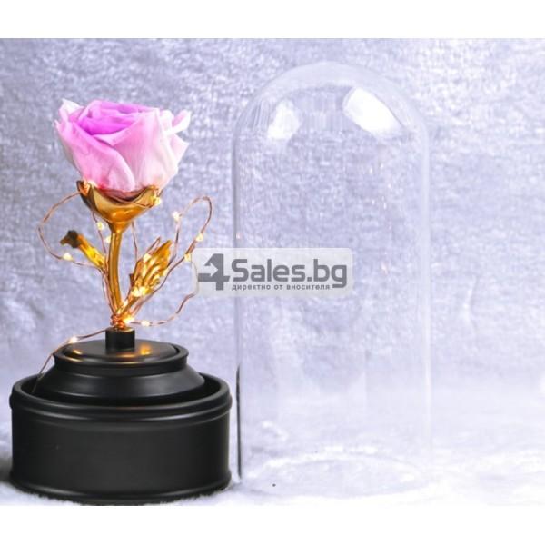 Вълшебна неувяхваща роза в стъкленица с LED светлина YSH J 2