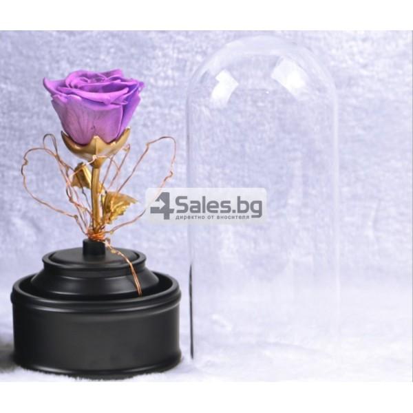 Вълшебна неувяхваща роза в стъкленица с LED светлина YSH J 3