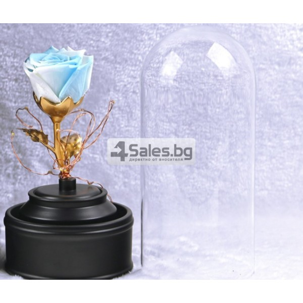 Вълшебна неувяхваща роза в стъкленица с LED светлина YSH J 4