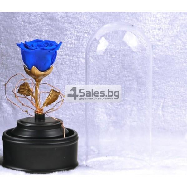 Вълшебна неувяхваща роза в стъкленица с LED светлина YSH J 5