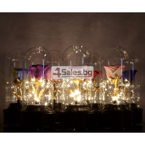 Вълшебна неувяхваща роза в стъкленица с LED светлина YSH J 6
