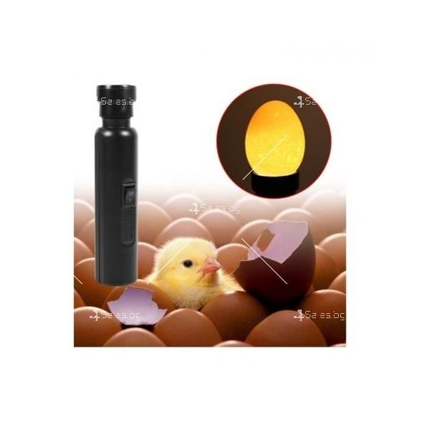 Лед фенер, който тества развитието на яйца 1