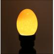 Лед фенер, който тества развитието на яйца 5