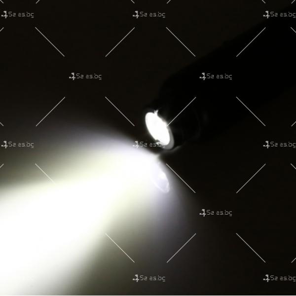 Лед фенер, който тества развитието на яйца 6