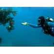 Фенер за водолази с издръжливост до 50 метра дълбочина FL73 4