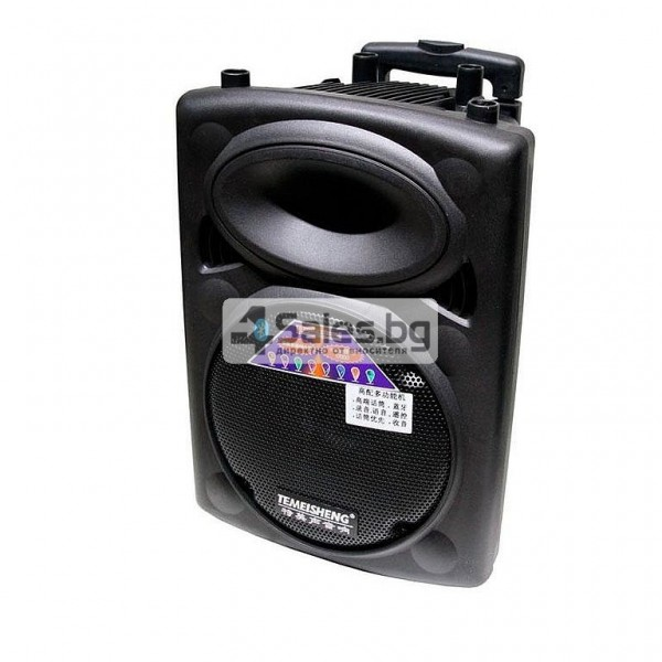 Преносима караоке колона с еквалайзер, радио и USB порт Temeisheng DP - 107 S 2