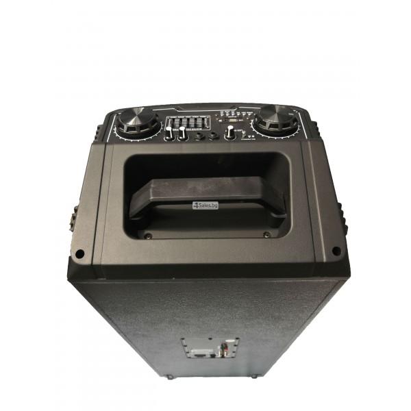 Avcrowns HS-TD1070 Парти спийкър с Bluetooth безжичен микрофон - 2X10 инча 11