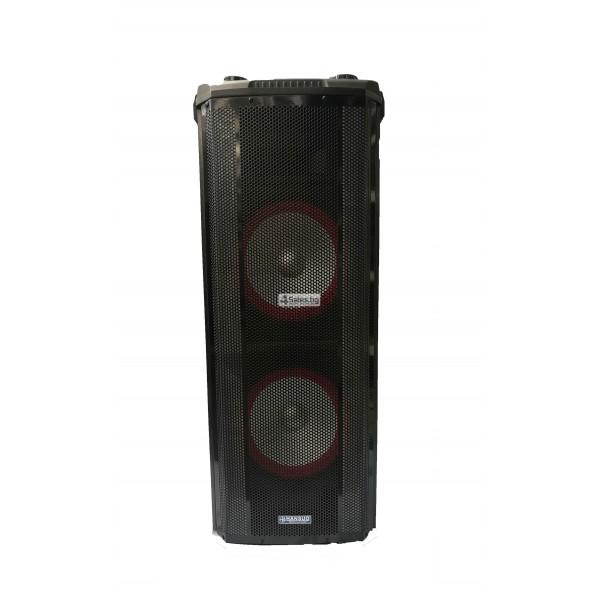 Avcrowns HS-TD1070 Парти спийкър с Bluetooth безжичен микрофон - 2X10 инча 13