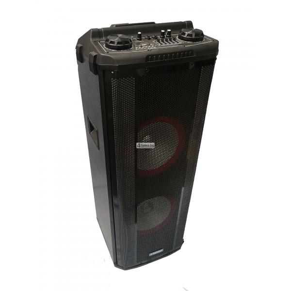 Avcrowns HS-TD1070 Парти спийкър с Bluetooth безжичен микрофон - 2X10 инча 14