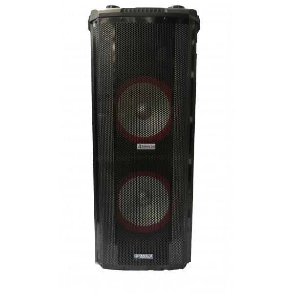 Avcrowns HS-TD1070 Парти спийкър с Bluetooth безжичен микрофон - 2X10 инча 16