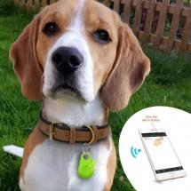Водоустойчив GPS за нашийник на кучета и домашни любимци GPS F B