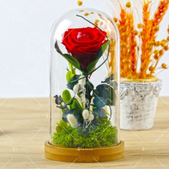 Вечноцъфтяща роза за подарък YSH G