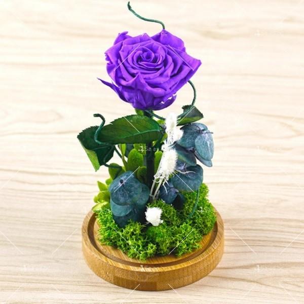 Вечноцъфтяща роза за подарък YSH G 3